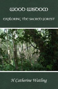 Wood Wisdom - Exploring the Sacred Forest